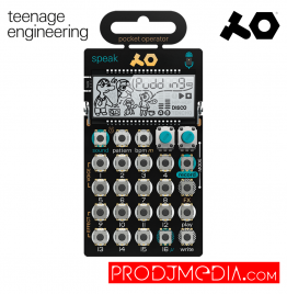 Teenage Engireening- PO-35 Speak