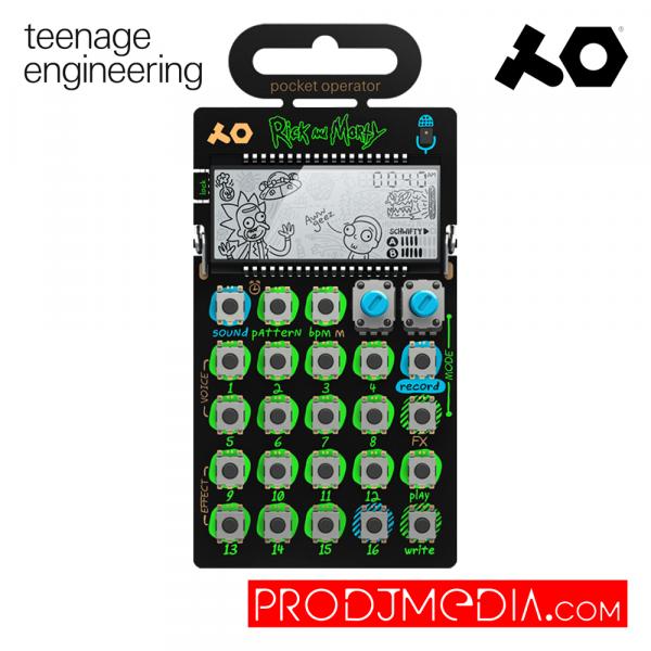Teenage Engireening PO-137 Rick and Morty
