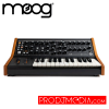 Moog Subsequent 25